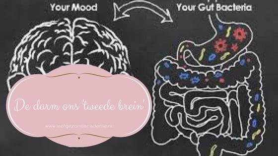 Darm-hersenverbinding-het tweede brein